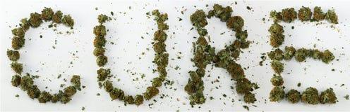 Bot som stavas med marijuana Royaltyfri Bild