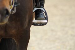 a bota preta do cavaleiro no estribo aperta no cavalo, o pé no stirru Foto de Stock Royalty Free