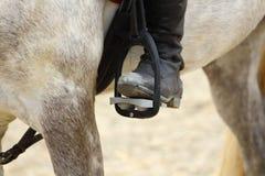 a bota preta do cavaleiro no estribo aperta no cavalo, o pé no stirru Foto de Stock