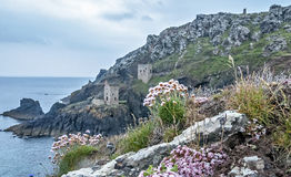 Botallack Tin Mines Royalty Free Stock Image