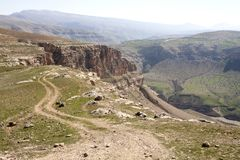 Botan dal, Siirt, sydöstliga Anatolien kalkon Royaltyfri Bild