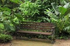 Botanic Garden. The Flecker Botanic Gardens, Cairns, Queensland, Australia Stock Image