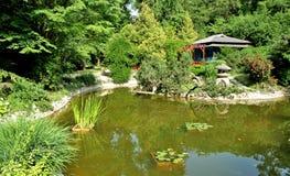Botanic garden Royalty Free Stock Photography