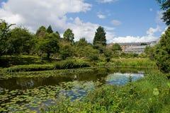 Botanic garden Stock Images