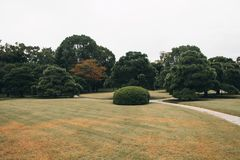 Botanic garden with a beautiful pond in Kyoto. stock photos