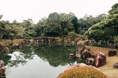 Botanic garden with a beautiful pond in Kyoto. stock photo