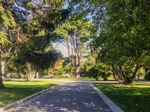 Botanic Garden, Christchurch, South Island, New Zealand stock photo