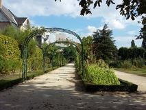 Botanic garden Royalty Free Stock Image