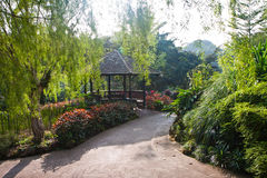 Botanic Garden Gazebo. Gazebo inside Singapore Botanic Garden at morning against the sun royalty free stock photo