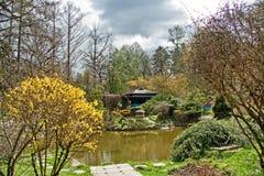 Botanic garden Royalty Free Stock Images