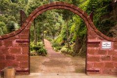 Botanic garden Jardim Botanico da Ribeira do Guilherme