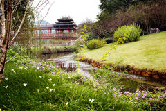 Botanic garden with a stream Royalty Free Stock Images