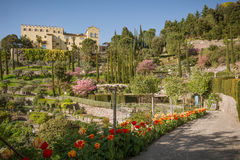 The Botanic Gardens of Trauttmansdorff Castle, Merano, south tyrol, Italy,. Offer many attractions with botanical species and varieties of plants from all over royalty free stock photos