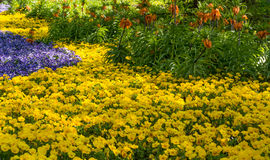 The Botanic Gardens of Trauttmansdorff Castle, Merano, south tyrol, Italy, stock image