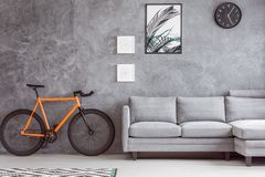 Botanic poster and urban bicycle. Light gray sofa, botanic poster, simple black clock and urban bicycle in contemporary gray living room stock photography