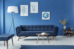 Botanic style room. Botanic style spacious blue living room with pictures on the wall Royalty Free Stock Photo