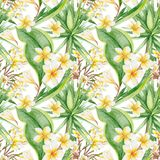 Botanic Tropical Pattern Stock Images