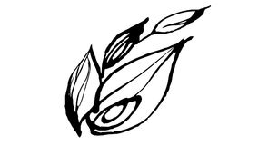 Botanica animata del disegno dell'inchiostro di calligrafia illustrazione di stock