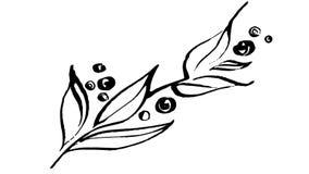 Botanica animata del disegno dell'inchiostro di calligrafia