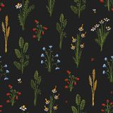 Botanica dark - seamless stylized colored pattern texture element of plants, flowers and insects vector illustration
