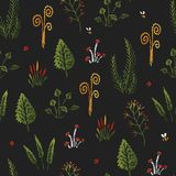 Botanica dark - seamless stylized colored pattern texture element of plants, mushrooms and insects. Botanica dark - seamless stylized colored pattern texture Stock Image