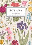 botanica Scheda floreale dell'annata illustrazione vettoriale