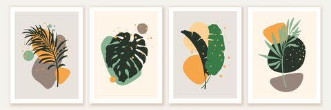 Free Botanical And Abstract Shapes Wall Art Design. Composition With Monstera, Banana, Palm Leaves, Green Foliage. Royalty Free Stock Photos - 217710608