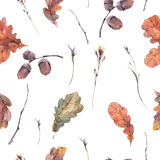 Botanical autumn seamless pattern Royalty Free Stock Images