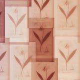 Botanical background. Stock Photos