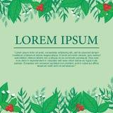 Botanical Background. Background with bontanical/floral decoratin.Botanical Frame Royalty Free Illustration