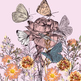 Botanical background with roses, field flowers. And butterflies Royalty Free Stock Photos