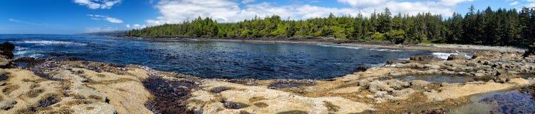 Botanical Beach. Coastal landscape at Botanical Beach in the Juan de Fuca Provincial Park near Port Renfrew on Vancouver Island, British Columbia, Canada Stock Photo