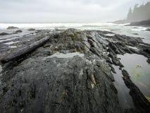 Botanical Beach, Juan de Fuca Trail, Port Renfrew, BC, Vancouver. Island Canada Royalty Free Stock Photos