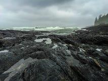 Botanical Beach, Juan de Fuca Trail, Port Renfrew, BC, Vancouver. Island Canada Stock Photos