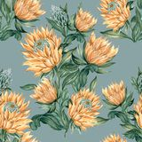 Botanical collage with King protea and green leaves branches sea stock images