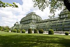 Botanical Dahlem stock images