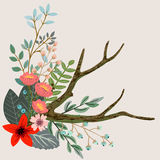 Botanical floral bouquet Royalty Free Stock Image