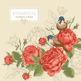 Botanical floral card with roses and birds Stock Images