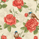 Botanical floral seamless pattern with roses and Stock Images