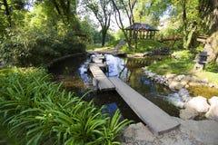 Botanical garden. One of the beautiful botanic gardens Royalty Free Stock Photos