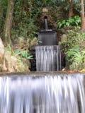 Botanical garden. Water pipe - Botanical garden - Rio de Janeiro - Brazil Stock Image