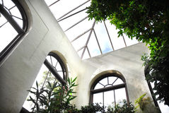 Botanical garden. Inside a botanical garden Royalty Free Stock Image