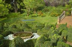 The botanical garden. A botanical garden at Funchal Royalty Free Stock Photography