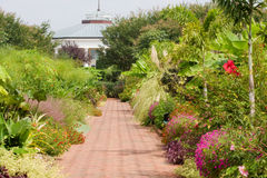 Botanical Garden Royalty Free Stock Photography