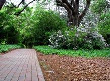 Botanical garden. Landscape view of a brick pathway through botanical gardens Royalty Free Stock Photography