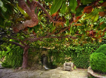 Botanical garden Balchik. Beautiful botanical garden in Balchik , Bulgaria Stock Photos