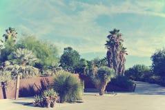 Botanical garden of Barcelona on a sunny day, retro style Royalty Free Stock Photo