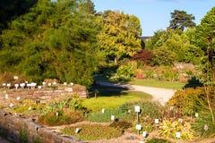 Botanical garden in Bonn Royalty Free Stock Photography