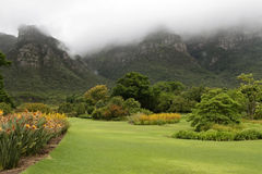 Botanical Garden of Cape Town Stock Photo