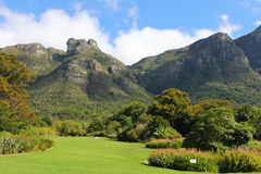 Botanical garden Cape Town Stock Images